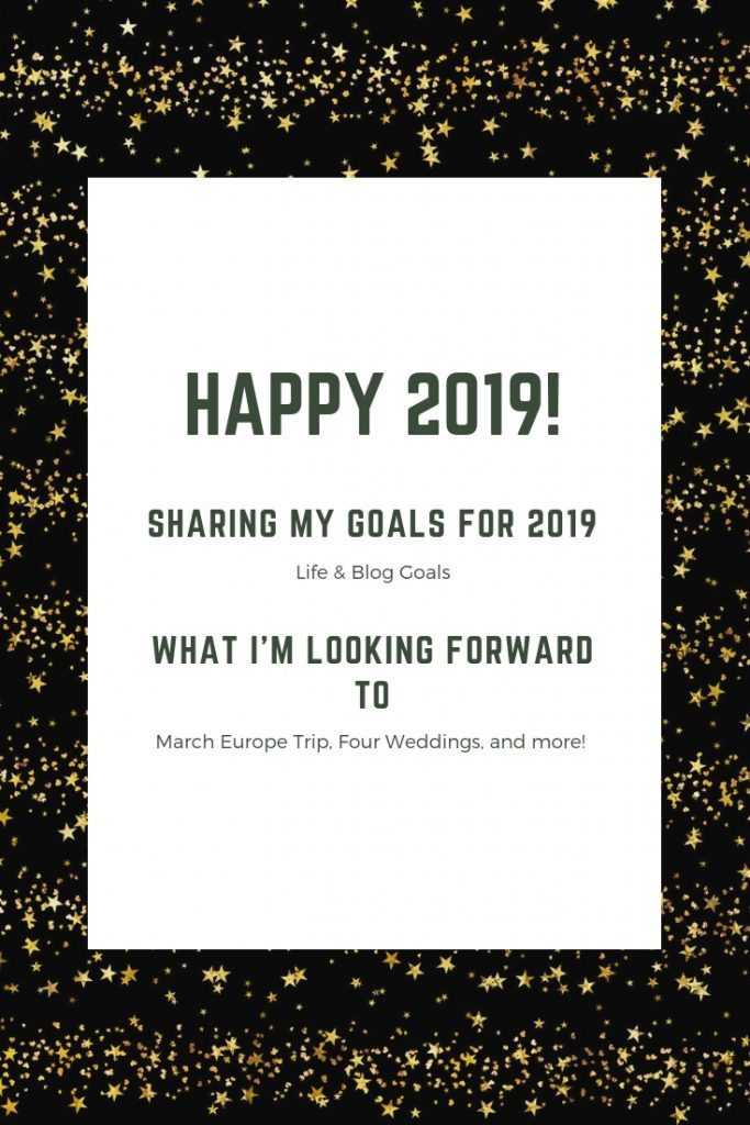 I'm finally sharing my 2019 goals! I definitely meant to share these earlier, but better late than never! What is one of your 2019 goals?!